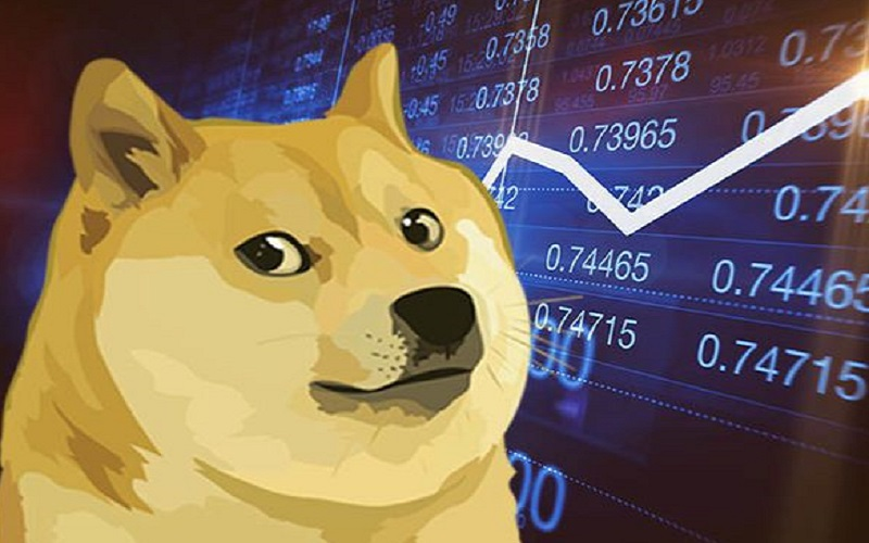 While The Prices Of Other Cryptocurrencies Declined, Dogecoin Increased By 160%