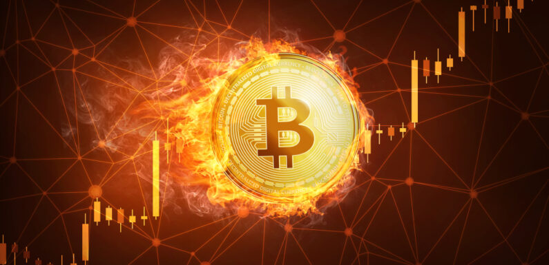 Crypto Fund Management Firm CEO Shares the Major Reasons Behind the Latest Bitcoin Dips