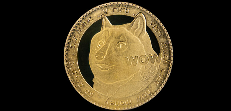 """Shay Benhamou – """"Dogecoin Is the New Name of Uncertainty, Says Airsoft Technology CEO"""""""