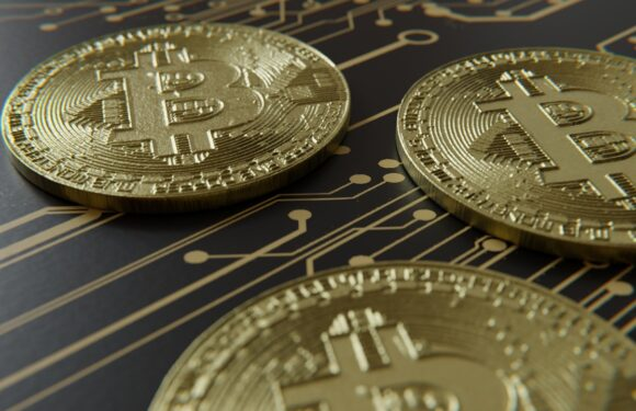 What the Industry Experts have to say about Bitcoin Adoption in El Salvador